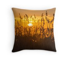 Sunset Golden Reeds Throw Pillow