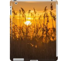 Sunset Golden Reeds iPad Case/Skin