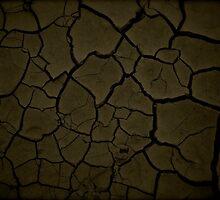 Desert Floor by eladgafin