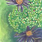 Aster by acquart
