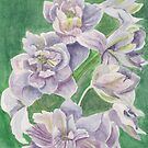 Lilac flowers by acquart