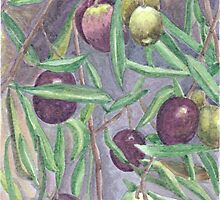 Olives by acquart