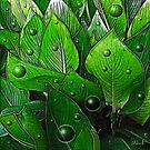 Canna Leaves by Diane Johnson-Mosley