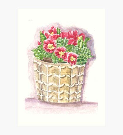 Jar primrose Art Print