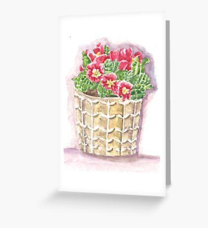 Jar primrose Greeting Card