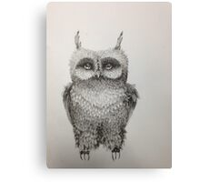 Cute Owl highly detailed Canvas Print