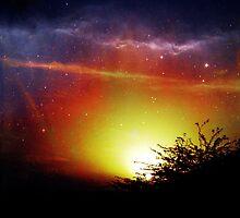Luminous by Maliha Rao