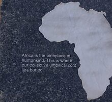 Museum of the Cradle of Humankind - Gauteng South Africa by eyedocbrian