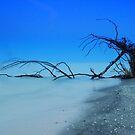 Stump Pass Beach by kathy s gillentine