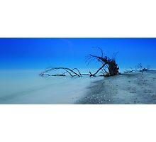 Stump Pass Beach Photographic Print