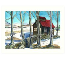 Maple Sugaring in Vermont Art Print