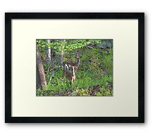 We Are Watching You  Framed Print
