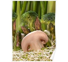 Fun Vegetable Landscape 2 Poster