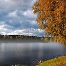 Autumn in Druskininkai by Xandru