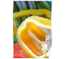 Yellow Pepper Abstract Poster