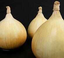 Onions by Robert Steadman