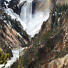 The Heart of Yellowstone by Kay Kempton Raade