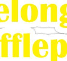 I belong in Hufflepuff Sticker