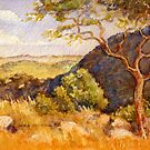 Rustenburg hillside: African bush by Gregory Pastoll