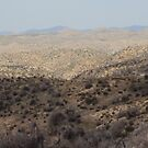 The Backside of The San Bernnardino Mountains by Bearie23