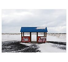 A Little Shelter in the Chill, Alftanes (Iceland) Photographic Print