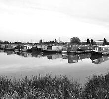 Boats Moored at Barton Marina by Rod Johnson