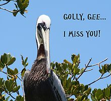 Golly, Gee...I Miss You! by Eileen McVey