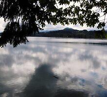 Foster Lake near Sweet Home, Oregon. by Larryp