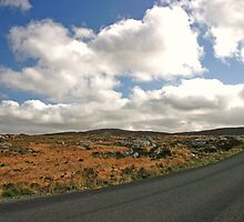 Road to Glenveagh national park #2 by Martina Fagan