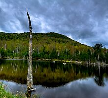 Pond at Foot of White Face Mountain by Joe Jennelle