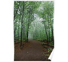 The Path Taken Poster