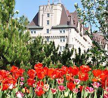 Tulip & Castle Hotel by VikasGupta