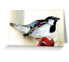 Diversionary Tactics Greeting Card