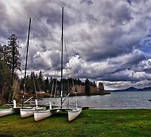 Lake Quinault by Kathy Weaver