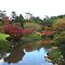 This autumn at the Japanese Gardens, Toowoomba by Marilyn Baldey