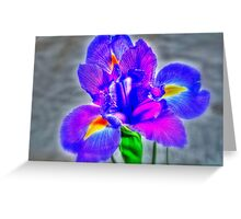 Flower in close up Greeting Card