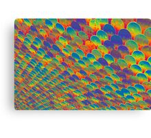 Coloured Disks Canvas Print