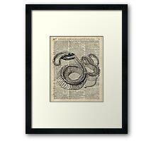 Boa Snake Skeleton,Ink and Pen Anatomy Chart,Vintage Dictionary Art Framed Print