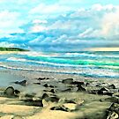 Beach Scenery by Walter Colvin