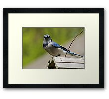 ya, i know your there Framed Print
