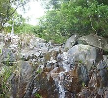 idyllic,stream,blasting,down,rock,cliff,surrounded,by,radiant trees by Joseph Green