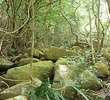 jungle_overgroth fighting for life amongst huge gree moss covered boulders by Joseph Green