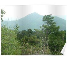 mountain towering over lush green jungle Poster