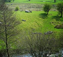 Vale of Clwyd, Wales by nadine henley
