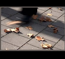 Autumn's path by Rob Beckett