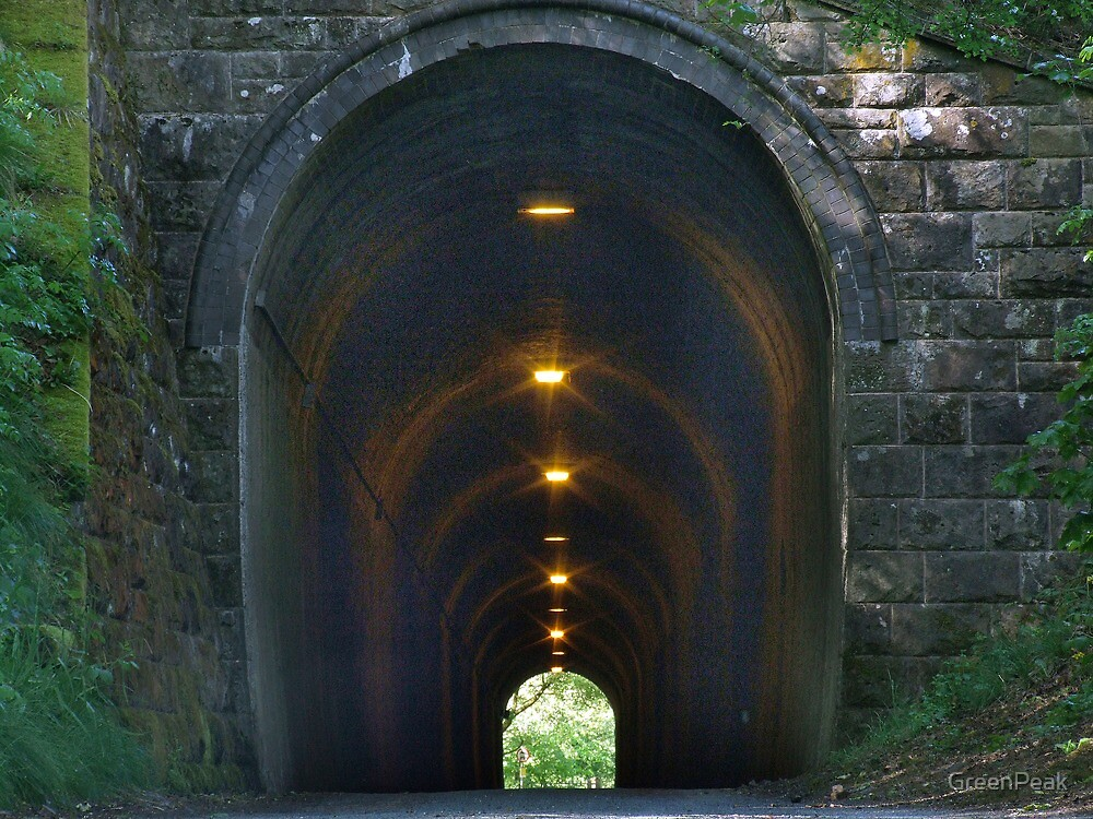 Swainsley Tunnel by Paul  Green