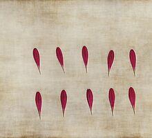 Ten by Anne Staub