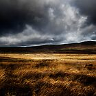 Lights & Shade, Sally Gap, Co Wicklow, Ireland by 2cimage