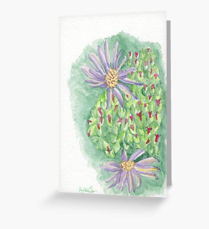 Aster light Greeting Card