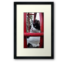 In reality Framed Print
